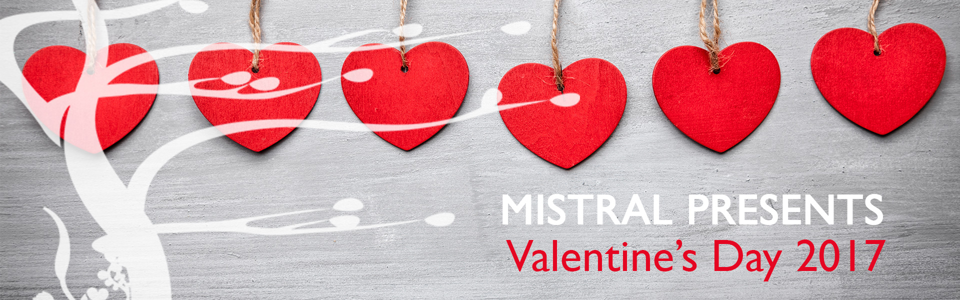 Valentine's Day at Mistral Restaurant Princeton NJ